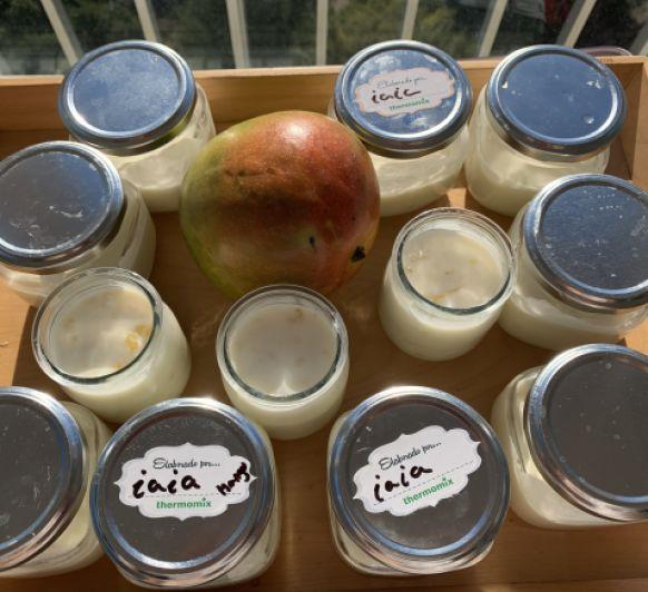 La yaya y sus Yogures para Bebé con Thermomix® , hoy toca de Mango!