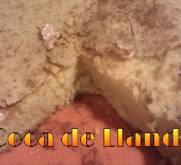 COCA DE LLANDA